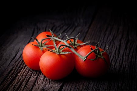 Fresh picked red tomatoes composition  Vegetables  Stock Photo