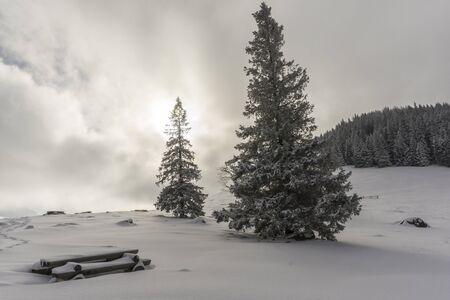Beautiful winter landscape on Rusinowa Glade. Tatra mountains.