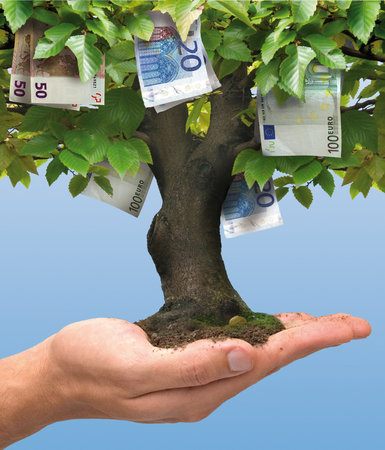 Euro money tree growing on human hand - business concept