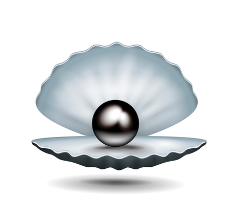 Pearl inside shell.