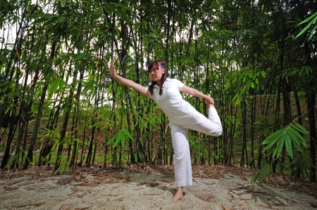 Asian Woman practising Yoga in Woods. suitable for healthy lifestyle concepts photo