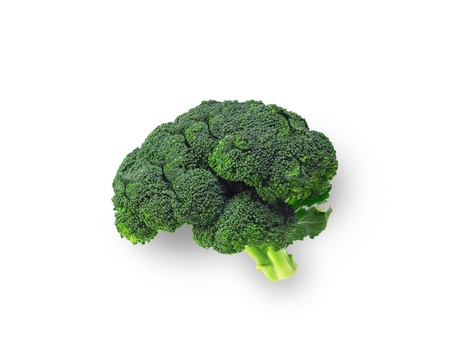Brocolli shaped like brain isolated Stock Photo