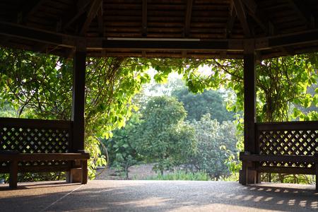 describing: Useful as background or describing park and nature