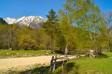 This is spring landscape in Caucasus mountains photo