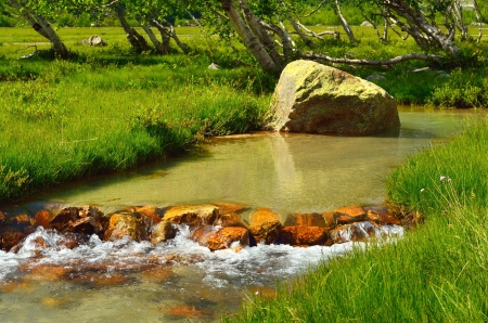 This is colorful brook in valley Caucasus mountains photo