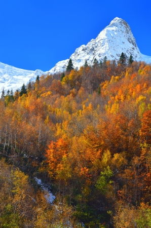 This is colorful autumn in Caucasus mountains photo