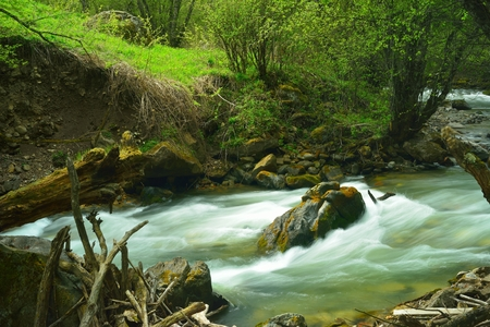 This is colorful river in Caucasus mountains in spring ,Daut photo