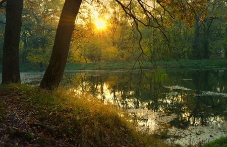 colorful sunrise: This is colorful sunrise in Caucasus nature in fall