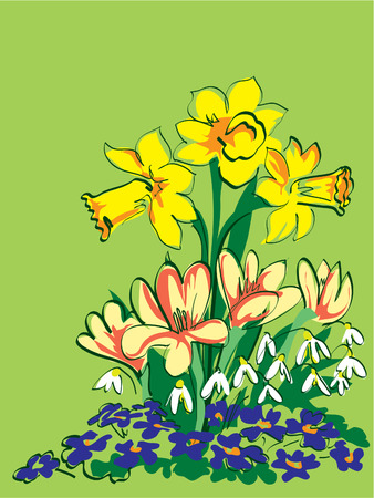 growing up: Coloured drawing of four kinds of spring flowers growing up from the ground Illustration