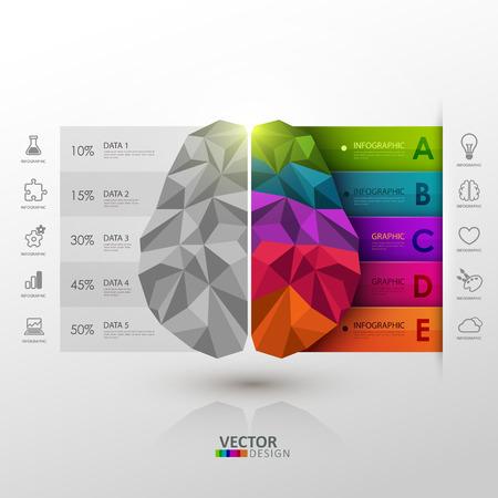 cerebro: Vector plantilla de infografía. Funciones cerebrales. Vectores