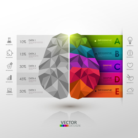 Vector infographic template. Brain functions.