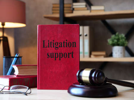 Litigation support is shown on the photo using the text