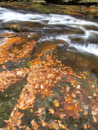 Time lapsed stream with colorful autumn leaves in the foreground