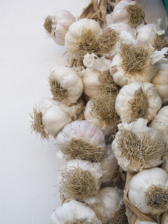 String of Garlic Bulbs Hanging on a white wall background Stock Photo