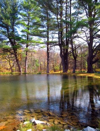 Still Pond Reflecting Autumn Trees Archivio Fotografico