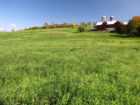 Green Grass Field with Red Barn in Background Stock Photo