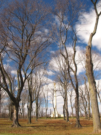 Pattern of bare trees in a park with Obelisk in Background