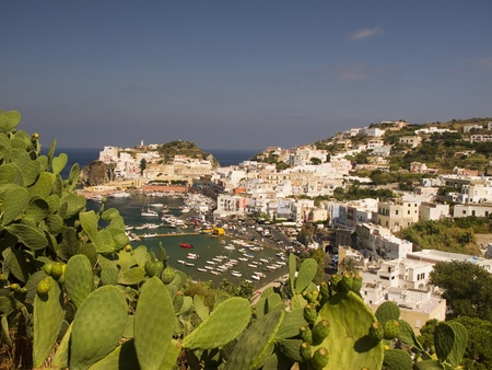 Aerial view of the main harbor of Ponza, Italy. Coastline and mountains framed by cactus figs.