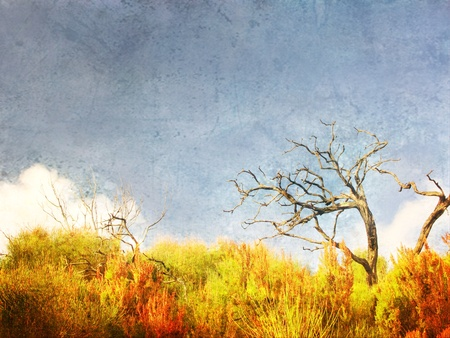Art landscape with grunge textured background.  Bare branches and copy space in sky area.