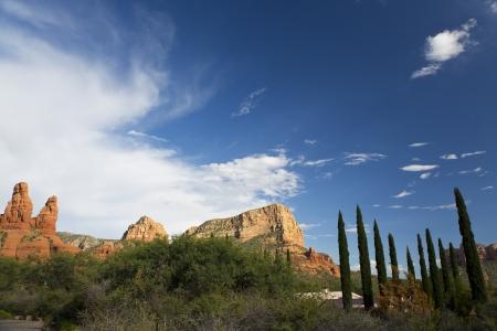 arizona landscape: Tuscan Cypress in Sedona Arizona Landscape Stock Photo