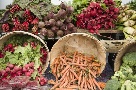 organic background: Colorful organic produce at the Farmer Stock Photo