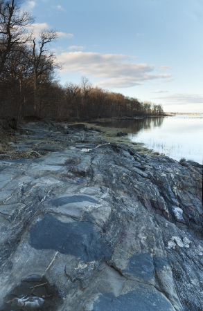 Geologic Outcropping with shore and trees in the background