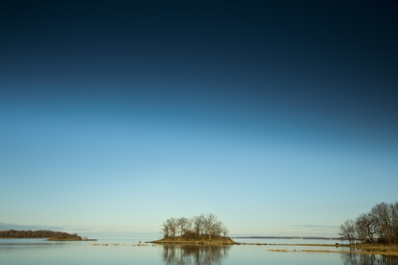 Tree Island with low horizon and sky space