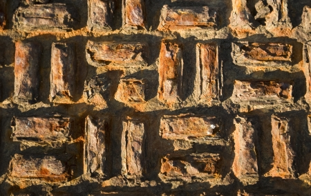 Detail of Rusted Dirty Manhole Cover - abstract background Stock Photo - 20625661