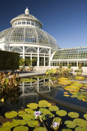 Waterlily pond and Greenhouse Dome