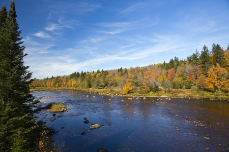 Shallow river with autumn scenery along the shore Stock Photo