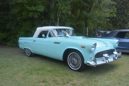 thunderbird: Old classic car, 1957 Ford Thunderbird. outdoor antique cars show. Jacksonville zoo exhibition. Photo taken on August 24th, 2014. Editorial