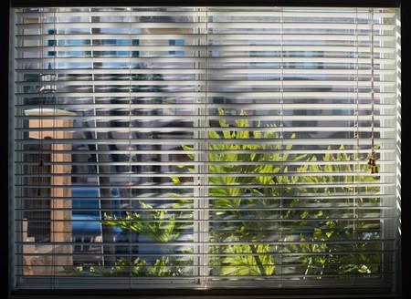 Sunshine splashed window closed through the white blinds. black frame