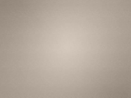 Beige leather texture. vignette edges. White center