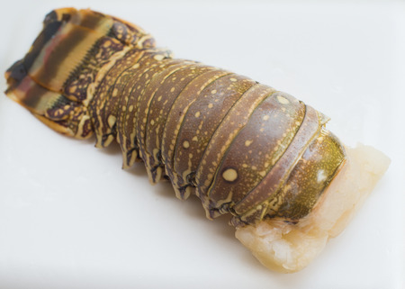 Raw lobster tail isolated on a white background