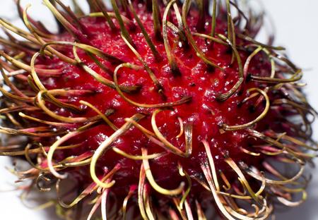 Organic food, rambutan fruit closeup on white background
