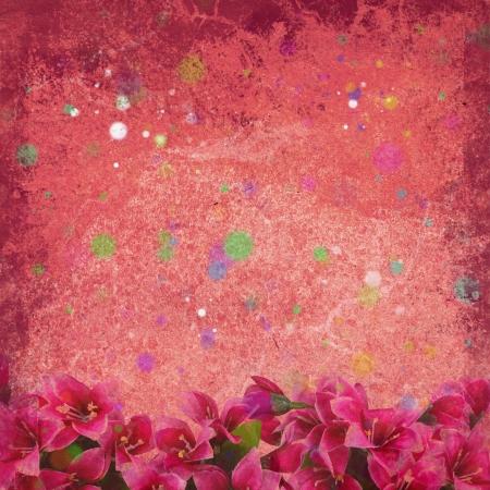 red flower on retro background photo