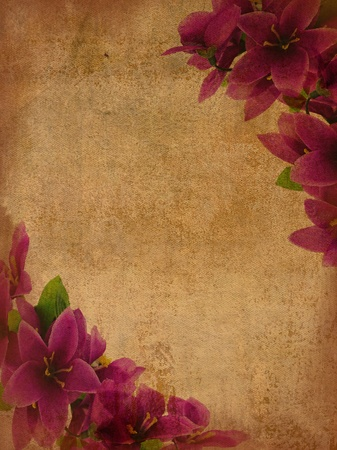flowers on grunge background