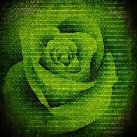 Green Rose retro style