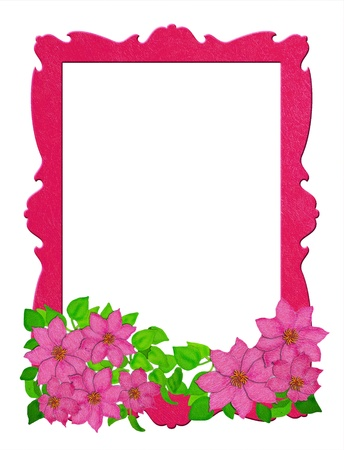 ferns and orchids: flowers and frames  Stock Photo