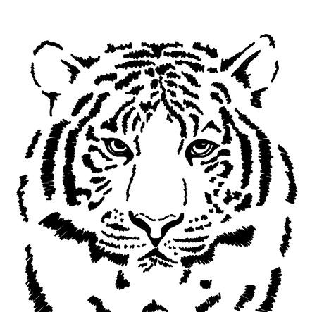 tigresa: Boceto de tigre blanco Foto de archivo