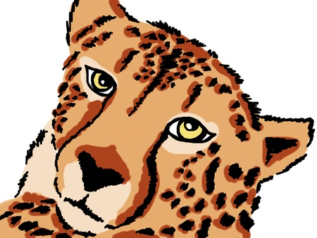 lurk: drawing of Leopard Stock Photo