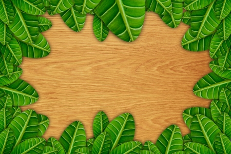 green floral frame with wooden background Stock Photo - 14471938