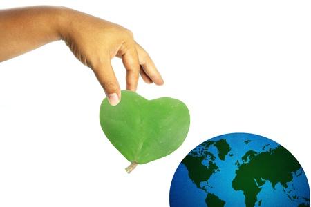 Heart-shaped feuilles dans un main de l'homme, concept terre l'amour; isol� sur blanc