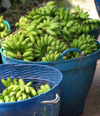 close up on banana fruit
