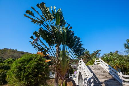 Sanya garden bridge Stock Photo