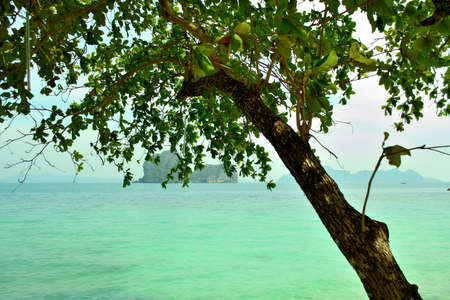 koh ngai island photo