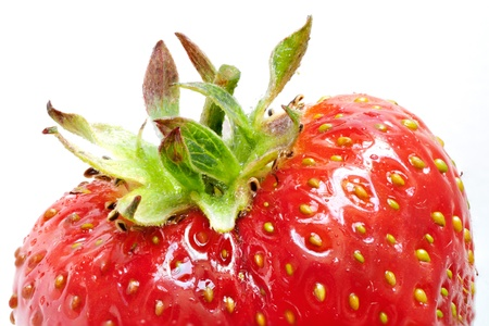 Close-up of a ripe red strawberry on white, top half  Stock Photo - 14247518
