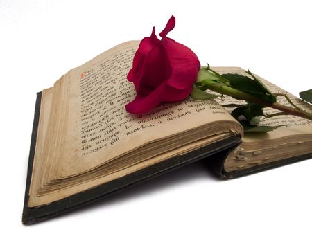 relict: Red rose on an old book
