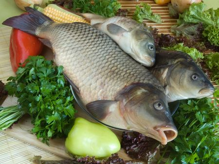 Carp fish close-up on chopping board photo