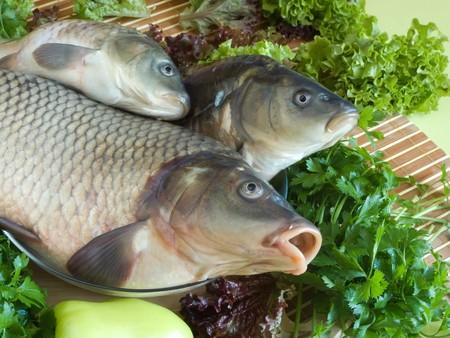Carp fish close-up on chopping board photo